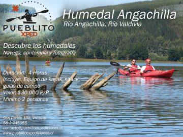 Humedal-angachilla-kayak-chile